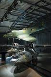 Svenskt flygvapenmuseum för hetlevrad person och catalina Royaltyfri Bild