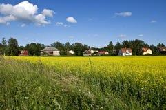 Svenskt lantligt landskap Royaltyfri Fotografi