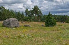 Svenskt lantligt landskap i sommar Arkivbilder