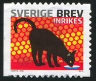 Sverige katt royaltyfri fotografi