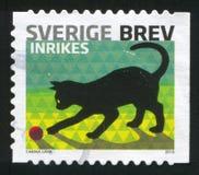 Sverige katt royaltyfria foton