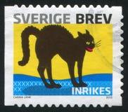 Sverige katt royaltyfri bild