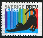 Sverige katt arkivbild