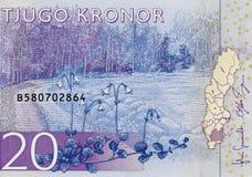 Sverige 20 krona 2015 sedel, svenskt pengarslut upp Royaltyfri Fotografi