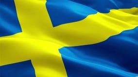 Sverige som vågr flaggan Vinka för flagga för medborgare 3d svenskt Tecken av Sverige den sömlösa öglasanimeringen Svensk upplösn royaltyfri illustrationer