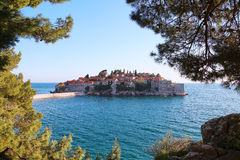 Sveti Stefan island in Budva, Montenegro. Sea. The frame of the branches of trees royalty free stock image