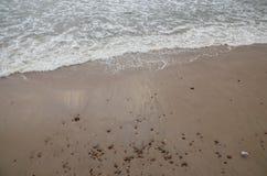 Svetlogorsk strand royaltyfria foton