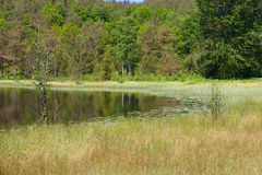 Sviland Park and Pond 03 Stock Photography