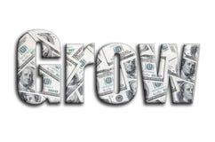 sviluppisi L'iscrizione ha una struttura della fotografia, che descrive molte fatture di dollaro americano illustrazione di stock