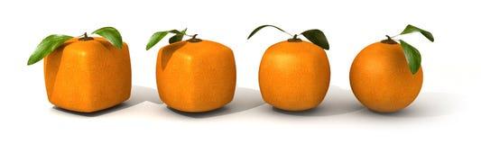 Sviluppo arancione illustrazione di stock
