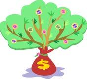 Sviluppo dell'albero dei soldi Fotografia Stock Libera da Diritti