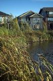 Sviluppo ecologico Fotografia Stock