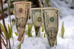 Sviluppo finanziario della sorgente Fotografia Stock Libera da Diritti
