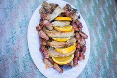 Svin i filtar med griskött Arkivfoto