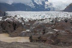 Svinafellsjokull in Islanda Immagine Stock Libera da Diritti