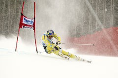 SVINDAL Aksel Lund Stock Photography