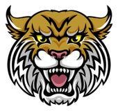 Svindel- Bobcat Mascot Arkivbilder