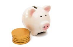 Svinspargris med mynt fotografering för bildbyråer