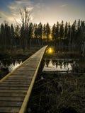 Svinstasjön de la puesta del sol Imagen de archivo libre de regalías