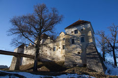 Svirz Castle Royalty Free Stock Image