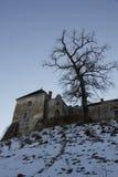 Svirz Castle Stock Image