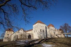 Svirz Castle Stock Images