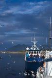 Svolvaer,挪威 免版税图库摄影