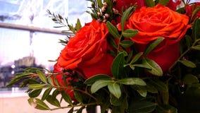 Svp, donnez-moi les fleurs Photo stock