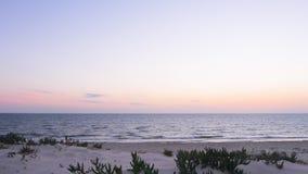 Svuoti il paesaggio calmo di vista sul mare con le palme e della sabbia sulla spiaggia, filtrante il colpo video d archivio