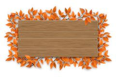 Svuoti il segno di legno con il ramo di albero rosso di autunno Fotografia Stock