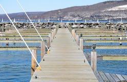 Svuoti l'inverno tardo Seneca Lake di slittamenti che mostra i ponti di caricamento diritti Fotografia Stock