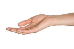Svuoti la mano aperta della donna Isolato immagini stock