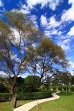 Svuoti la strada, il cielo blu e la nube curvi. immagine stock