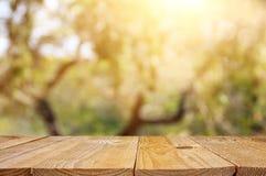 Svuoti la tavola rustica davanti al fondo verde del bokeh dell'estratto della molla esposizione del prodotto e concetto di picnic fotografia stock libera da diritti