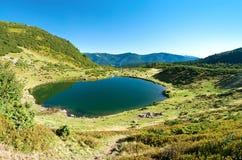 Svydovets土坎的湖Vorozheska 库存照片