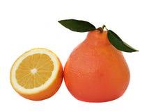 swój pomarańczowa sekcja obrazy royalty free