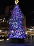 SW DC Christmas Tree royalty free stock photo