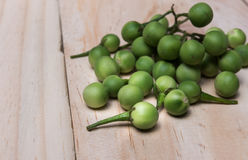 Sw torvum Solanum ягоды Турции на деревянном поле Стоковые Фотографии RF