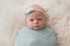 Swaddled Baby Girl with Cute Expression Royalty Free Stock Image
