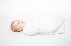 Swaddled infant Stock Photography