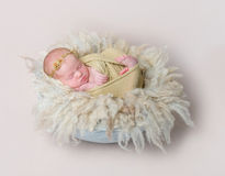 Swaddled kid napping on yellowish furry pillow Stock Image