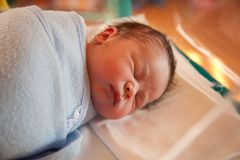 Swaddled new born baby Stock Photography