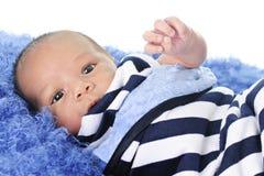 Swaddled Newborn Royalty Free Stock Photography