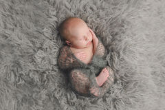 Swaddled, Sleeping Newborn Baby Boy Royalty Free Stock Photos