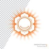 Swadhisthana Chakra isolou o ícone colorido - para o estúdio da ioga, bandeira, cartaz Conceito editável Fotos de Stock