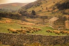 Swaledale dans les vallées de Yorkshire photo stock
