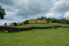 Swaledale jordbruksmark fotografering för bildbyråer