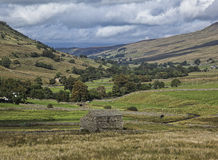 Swaledale Royalty Free Stock Photo