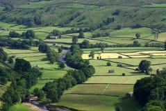 Swaledale. Yorkshire. England Arkivfoto