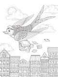 Swallow adult coloring page Royalty Free Stock Images